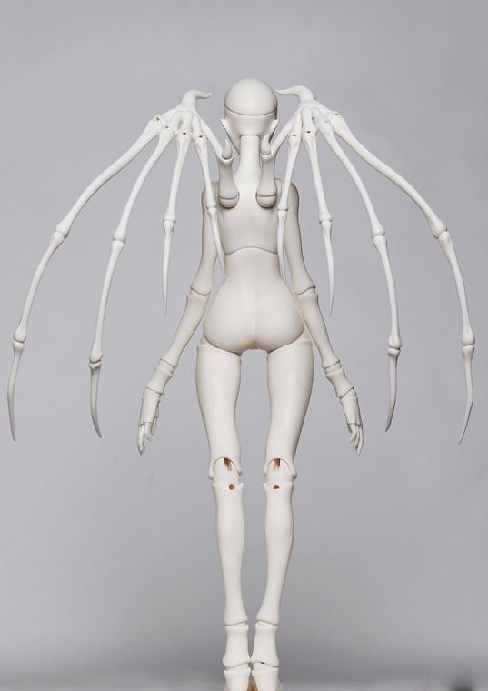 Y-body-04-1