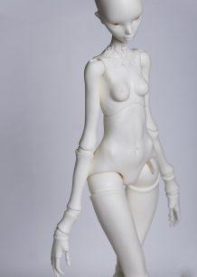 Y-body-05