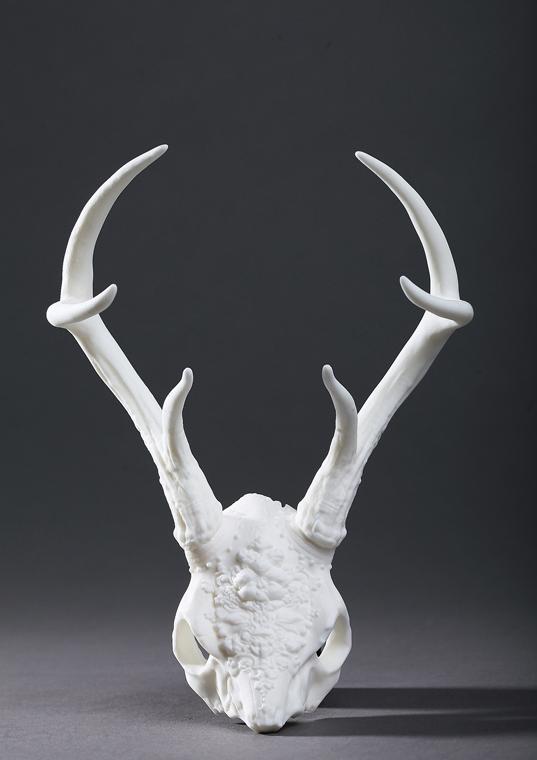 Deers Antler (Medeas)